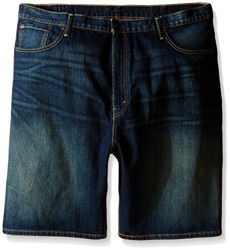 Levi's Men's Big-Tall Loose 569 Shorts
