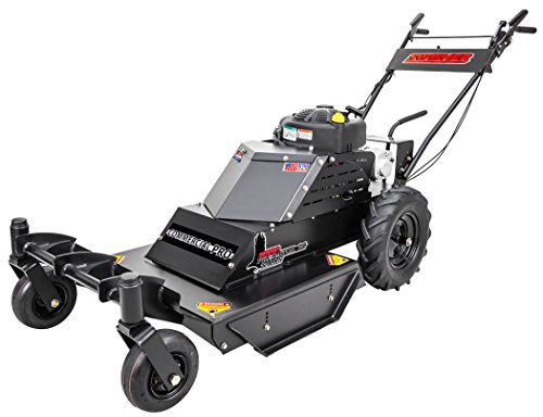 "Swisher WBERC11524C 12V Predator Talon Commercial Pro Walk Behind Rough Cut Mover, 24"", Black"
